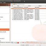 Los reproductores de música menos conocidos para Linux