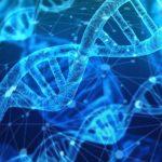 Cómo se puede vender su ADN por dinero
