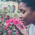 Se enseña a la inteligencia artificial a reconocer los olores