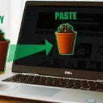 Cómo compartir archivos entre el PC anfitrión y las máquinas virtuales