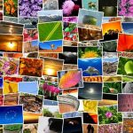 Cómo organizar las fotos con la aplicación Fotos en Windows 10