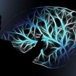 ¿Funcionan realmente las aplicaciones de entrenamiento cerebral?