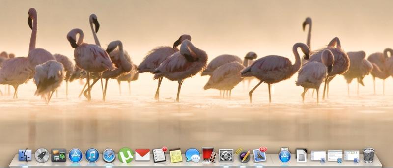 Cómo ocultar el Dock del Mac para mejorar la eficiencia