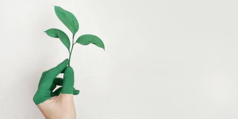 4 sencillas aplicaciones que le ayudarán a ser más respetuoso con el medio ambiente