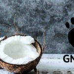 Revisión de GNOME Shell: Un escritorio mínimo con un gran rendimiento