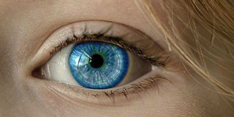 La nueva aplicación de reconocimiento facial de RA podría ayudarle a recordar rostros que ha olvidado