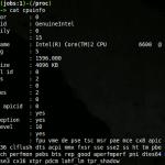 Usando el sistema de archivos / proc para examinar su funcionamiento interno de Linux