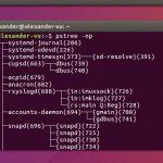 Guía para principiantes del comando pstree en Linux