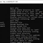 Cómo utilizar SFTP para transferir archivos desde servidores Linux